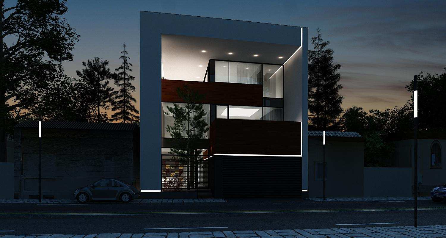Minimalist house project